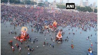 No Idol Immersion For Ganesh Chaturthi, No Procession During Moharram: Delhi Issues Guidelines