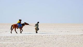 Rann of Kutch is One of The Largest Salt Deserts in The World
