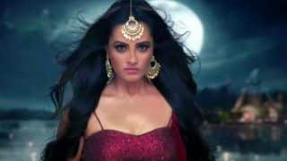 Naagin 3 Actress Anita Hassanandani Speaks on The Show's Success And How They Never Expected it to do so Well