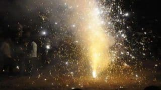 Delhi Air Pollution Worsens: Ban on Firecrackers in November? NGT Asks Centre