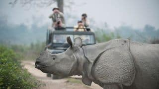 5 National Parks in Assam That Should be on Your Wildlife Bucket List