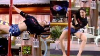 Bigg Boss 12: After Jasleen Matharu, Nehha Pendse Raises Hotness Meter With Her Sensuous Pole Dance, Watch