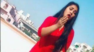 Video: Gargi Pandit का कॉकटेल डांस, हरियाणवीं गाने पर दिखाए पंजाबी जलवे