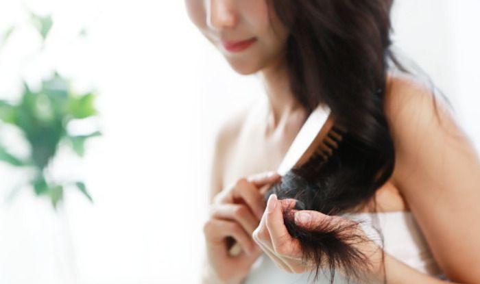 Tips: सर्दियों में रोज बाल धो सकते हैं या नहीं? जानें Hair Care से जुड़े हर सवाल का जवाब...