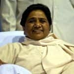 People Create Chaos, Loot Cake During BSP Supremo Mayawati's 63rd Birthday; Watch Video