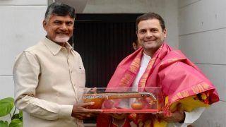 राहुल गांधी से की मुलाकात फिर नायडू बोले- हम देश को बचाने एक-साथ आ रहे हैं