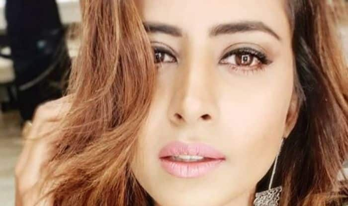 Punjabi Hottie Sargun Mehta Looks Stunning in Her Latest Picture, Check