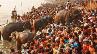 आज से शुरू होगा सोनपुर मेला, एक महीने तक सुई से लेकर हाथी भी बेच-खरीद सकेंगे यहां