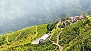 Darjeeling Offers Some of India's Most Idyllic Scenery