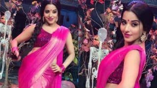 Bhojpuri Hot Bomb And Nazar Fame Monalisa Looks Sexy in Netted Pink Saree And Shimmery Blouse - See Pictures
