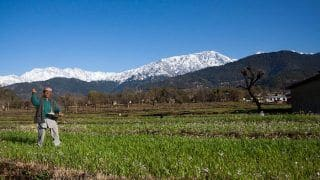 Palampur is an Offbeat Destination, Nestled Amidst The Foothills of Dhauladhar Range
