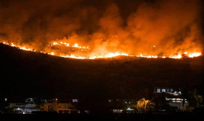 Fire in Forest Near Mumbai's Goregaon Doused; no Casualty, Damage Reported