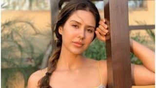 Punjabi Hotness Sonam Bajwa Raises Temperature With Her Sunkissed Picture, See Here