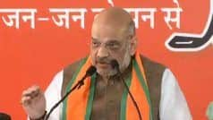 Assembly Election Results Not in BJP's Favour, But Cannot be Linked With 2019 Lok Sabha Polls: Amit Shah