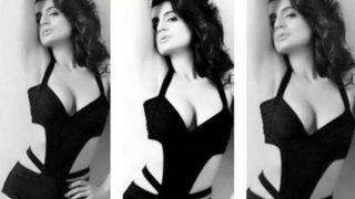Ameesha Patel Looks Smoking Hot in Black Monokini as She Poses Seductively in Her Latest Monochrome Picture