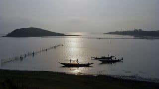 A Trip to Chilika Lake is a Must if You Want to Indulge in Dolphin Watching