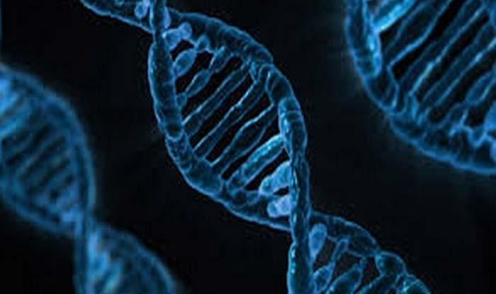 डीएनए की नई डिवाइस से अब पूर्वजों का सटीक पता किया जा सकेगा