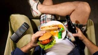Researchers Identify New Brain Circuits That May Act as a Brake on Binge Eating And Junk Food Craving