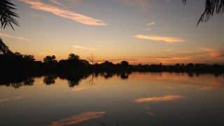 Visit Hazaribagh National Park to Experience Jharkhand's Incredible Biodiversity