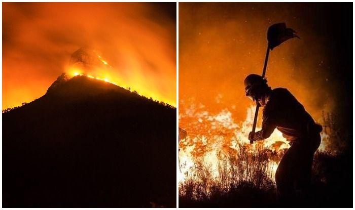 खतरे में केपटाउन का मशहूर लॉयन हेड माउंटेन, जंगल की आग में घिरा