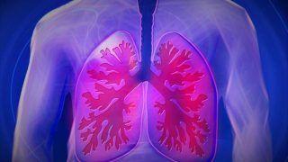 Air pollution Issue: वायु प्रदूषण से पहुंच सकता है आपके फेफड़ों को नुकसान, अपनी डाइट का ऐसे रखें ख्याल