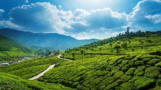 Munnar is a Hill Station With an Unmissable Old World Colonial Charm