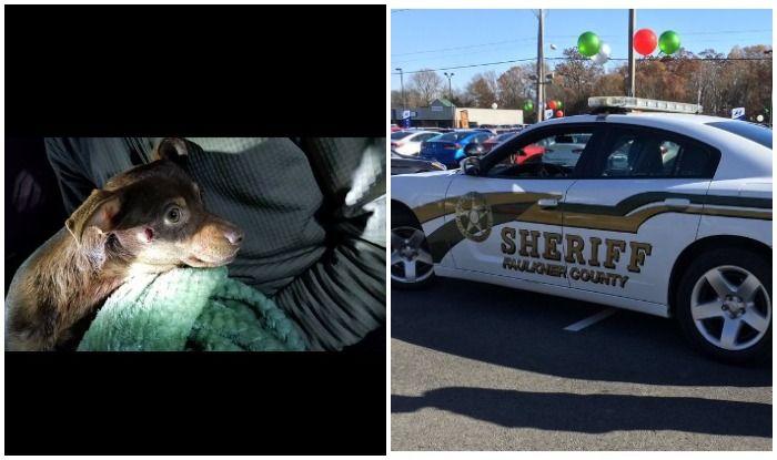 अमेरिका: कुत्ते को गोली मारने वाले आर्कन्सा के डिप्टी शेरिफ कीनन वालेस बर्खास्त