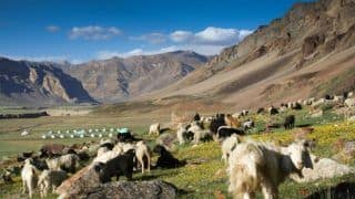How to Cycle From Kinnaur to Spiti Valley in Himachal Pradesh