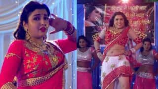 Happy Birthday Amrapali Dubey: Take a Look at Top Hot Belly Dancing Videos of Bhojpuri Actress