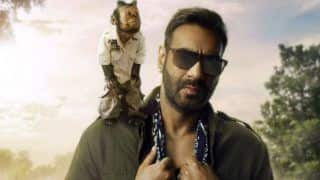 Total Dhamaal First Look: Crystal From Hangover 2 Steals The Limelight From Ajay Devgn in This Comedy Film
