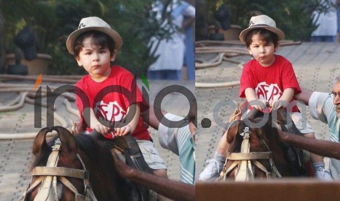 PICS: घोड़े की सवारी करते दिखे 'छोटे नवाब' तैमूर अली खान, चेहरा पर ऐसा टशन अच्छे-अच्छे को मात दे देगा!