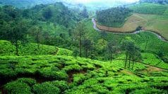 Vagamon in Kerala Offers Abundant Natural Beauty as Well as Adventure Activities