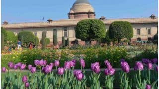 Mughal Gardens to Open For Public From THIS Date, Entry Through Online Booking Only | Check Timing, Other Details