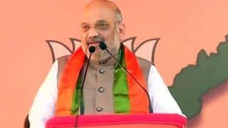 Lok Sabha Elections 2019: BJP President Amit Shah Says Kashmir Issue Wouldn't Have Arisen Had Sardar Patel Been PM of India