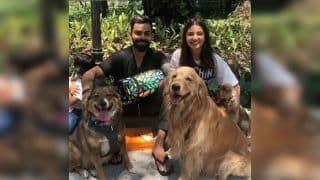 Virat Kohli, Anushka Sharma Along With RCB's AB de Villiers Engage in Puppy Love, Introduce New Friends Ahead of IPL 2019 | SEE PICS