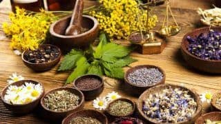 World Kidney Day 2019: 6 Ayurvedic Remedies For Healthy Kidneys