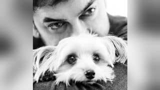 All is Well! Aamir Khan Posing With His Pet Pooch Imli is What Companionship is All About