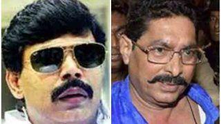 Lok Sabha Elections 2019: बीवी को लोकसभा पहुंचाने की जुगत में जुटे हैं बिहार के बाहुबली