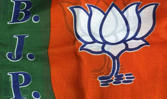 BJP flag. Photo Courtesy: IANS