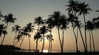For Utmost Peace And Quiet, Galgibaga Beach in South Goa is Your Best Bet