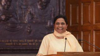 Lok Sabha Elections 2019: Mayawati's Nephew Aakash Anand in List of 20 Star Campaigners; BSP Leader Predicts BJP's Doom in Polls