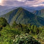 Top 4 Experiences to Have in Pelling, a Lovely Hill Station in Sikkim