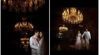 Sayyeshaa Saigal And Husband Arya Redefine Regal at Their Pre-wedding Photoshoot