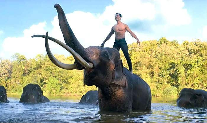 Junglee Box Office Day 2: Vidyut Jammwal's Film on Animals Shows Slow Growth, Earns Rs 7.70 cr