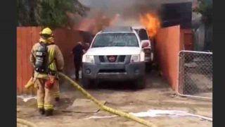 जान पर खेलकर कुत्ते को बचाने आग में कूदा नौजवान,आगे क्या हुआ देखें video
