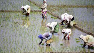 Rashtriya Kisan Mahasangh Appeals People to Not Vote For Modi Government