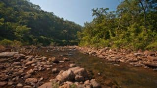 Maredumilli: Unwind in The Lap of Nature in The Andhra Village