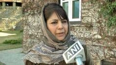 Mehbooba Mufti Stokes Controversy, Wants JKLF Chief Yasin Malik Release as 'he is Really Unwell'