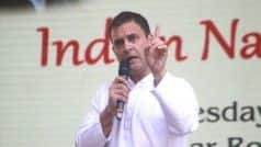 'Don't be Scared, You Are Fighting For the Truth', Rahul Has a Message For His Party Workers