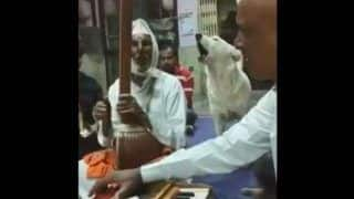 Pune Dog Sings Bhajans With Devotees at a Temple, Watch Cutest Viral Video